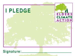 pledge jpg